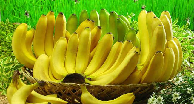 banan-polza