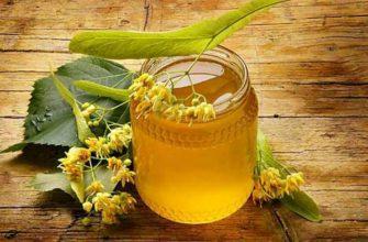 lipovii-med-poleznye-svojstva-protivopokazaniya