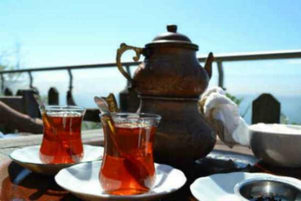 turetskij-chaj-svojstva