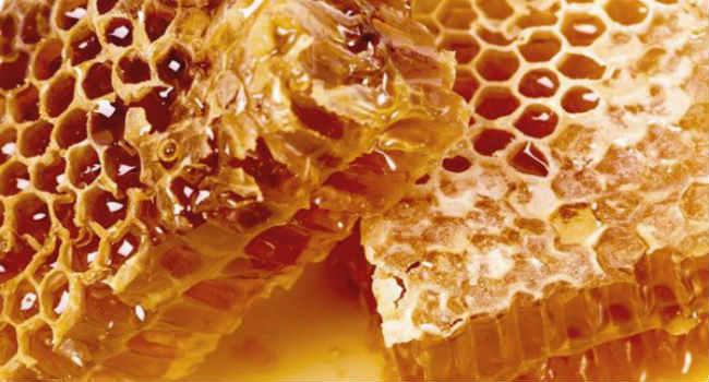 мед в сотах-польза-как есть мед в сотах