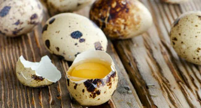 перепелиные яйца-польза-вред