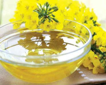 рыжиковое масло-польза-вред-применение
