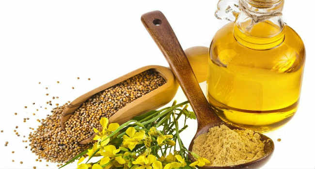 горчичное масло-польза-вред-состав