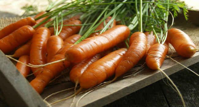 морковь-состав-польза-свойства