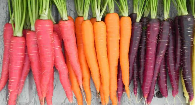 морковь-свойства-состав