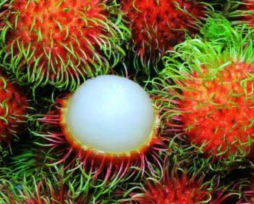 рамбутан-фрукт-как выбрать