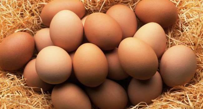 холестерин в яйцах-витамины