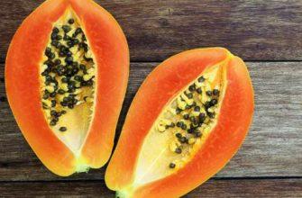 папайя-польза-вред-свойства