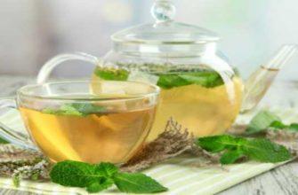 зеленый чай с мятой-польза-вред