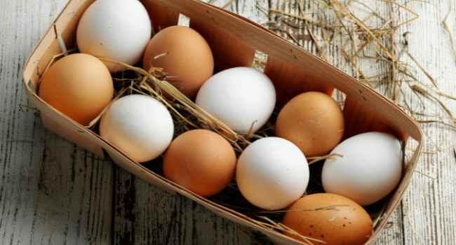 чем отличаются коричневые яйца от белых-какие полезнее