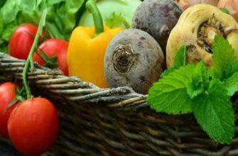 диета при лямблиозе- для и взрослых