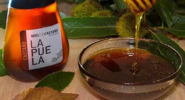 Каштановый мед свойства как принимать противопоказания