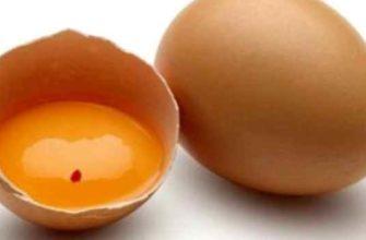 кровь в яйце-причины-можно есть