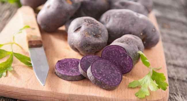 Синяя картошка польза и вред — Огород и прочее