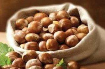 орех лещина-свойства-польза