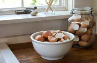 яичная скорлупа-польза-как принимать