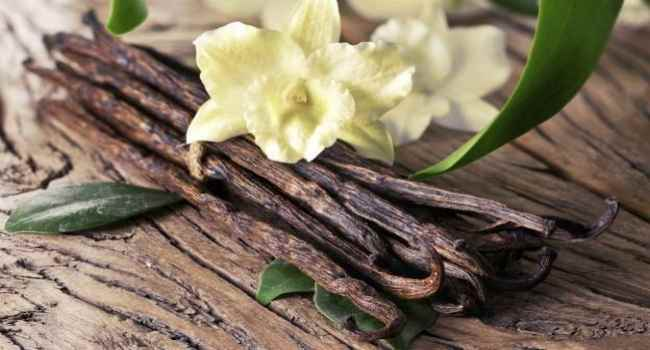 ваниль-польза-вред-противопоказания