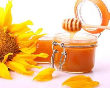 мед подсолнечника-полезные свойства и противопоказания