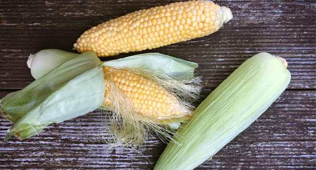 как варить кукурузу в початках-как правильно варить