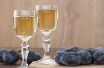 сливовица-что за напиток как сделать в домашних условиях