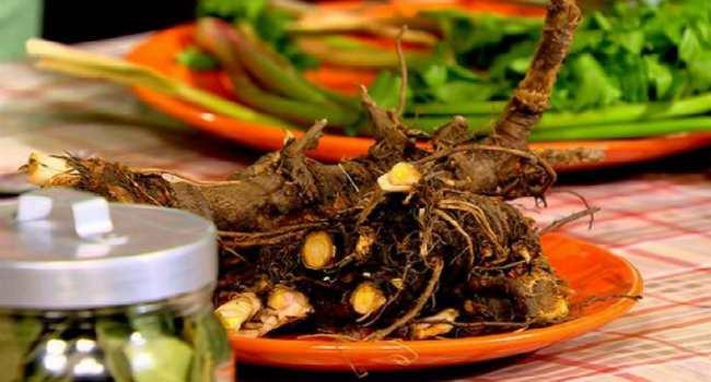 любисток-польза и вред-применение в кулинарии