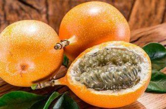 гранадилла-полезные свойства как едят