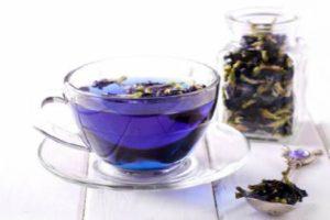 синий чай-синий тайский чай полезные свойства