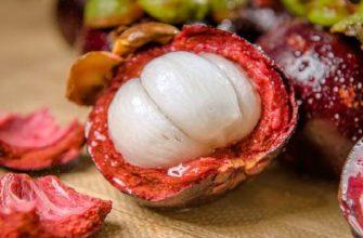 мангустин-полезные свойства и противопоказания