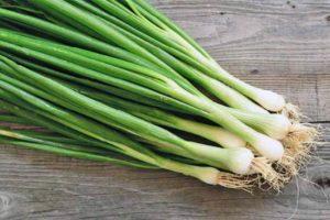 зеленый лук-польза и вред