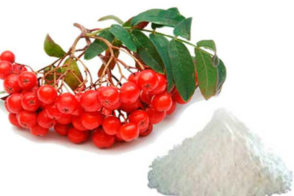 sorbinovaya-kislota-svojstva-i-primenenie